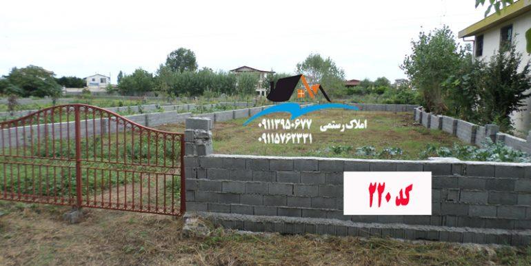 حاج-اسماعیل-مارک-زمین